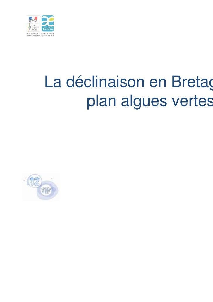 La déclinaison en Bretagne du     plan algues vertes