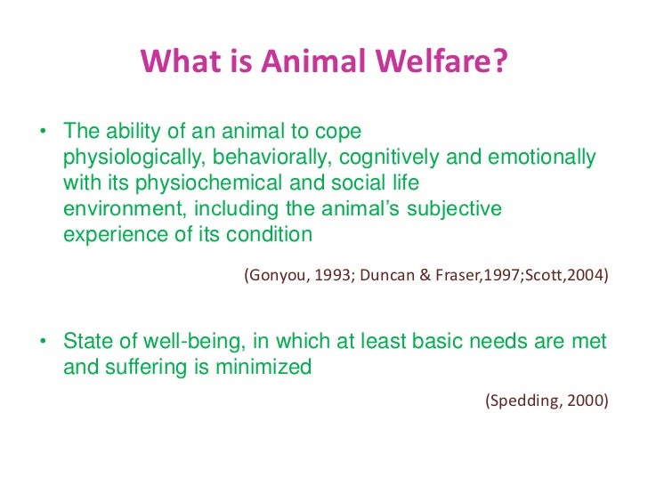 What is the evidence of welfare