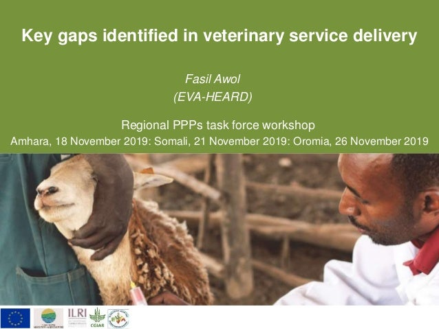 Key gaps identified in veterinary service delivery Fasil Awol (EVA-HEARD) Regional PPPs task force workshop Amhara, 18 Nov...