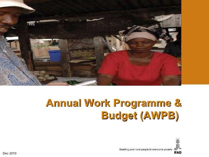 Dec 2010 Annual Work  Programme  & Budget (AWPB)