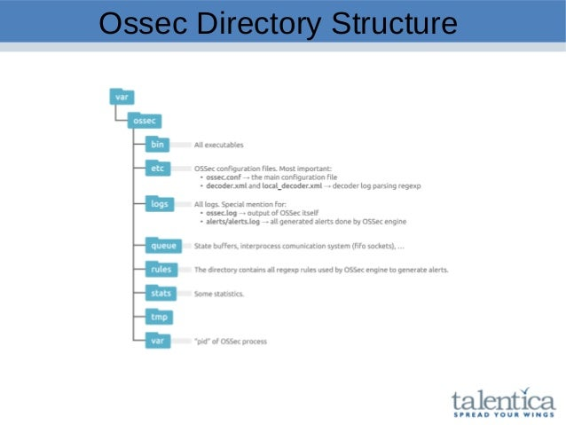 Ossec Directory Structure