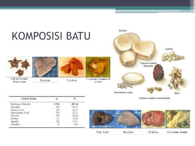 Paket Herbal Obat Penyakit Batu Ginjal