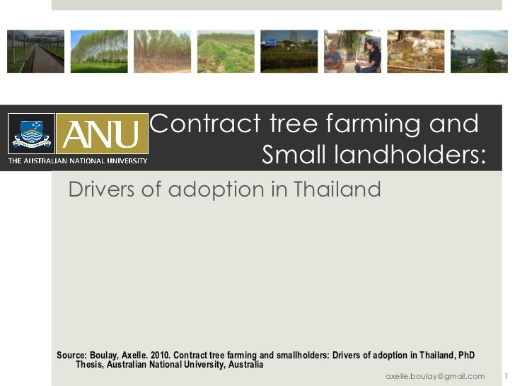 Contract tree farming and  Small landholders: Drivers of adoption in Thailand Source: Boulay, Axelle. 2010. Contract tree ...