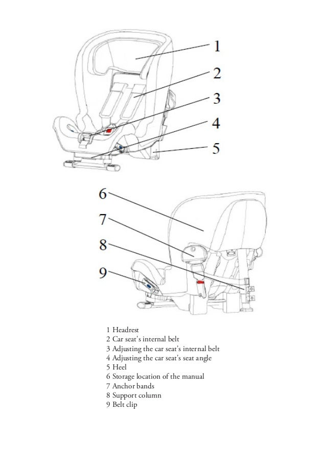 seat belt injuries from car accident