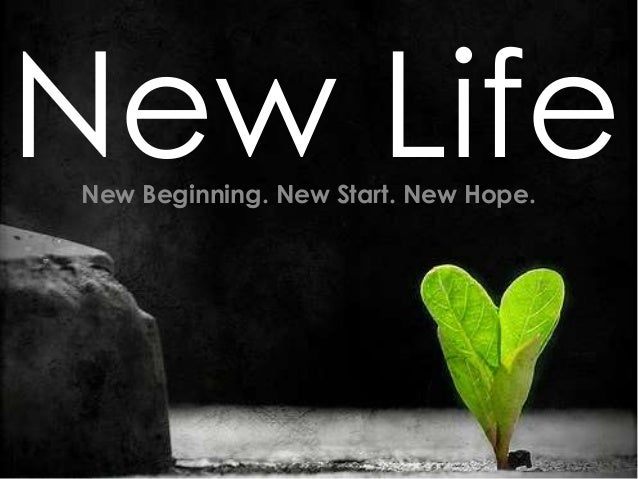 New LifeNew Beginning. New Start. New Hope.