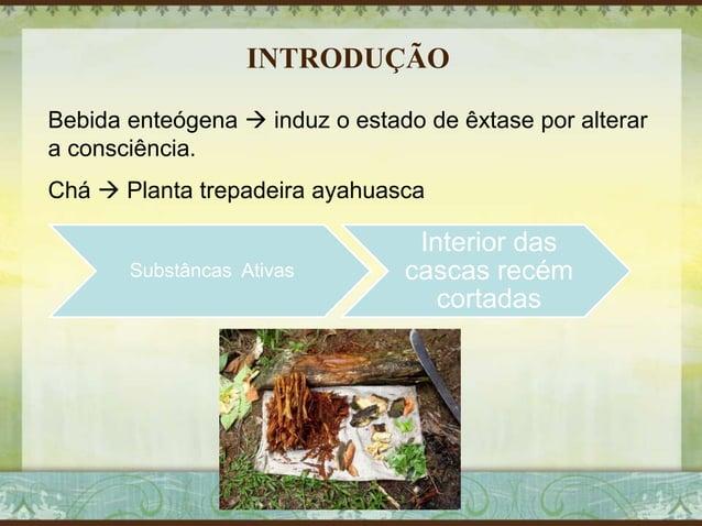 INTRODUÇÃO Bebida enteógena  induz o estado de êxtase por alterar a consciência. Chá  Planta trepadeira ayahuasca Substâ...