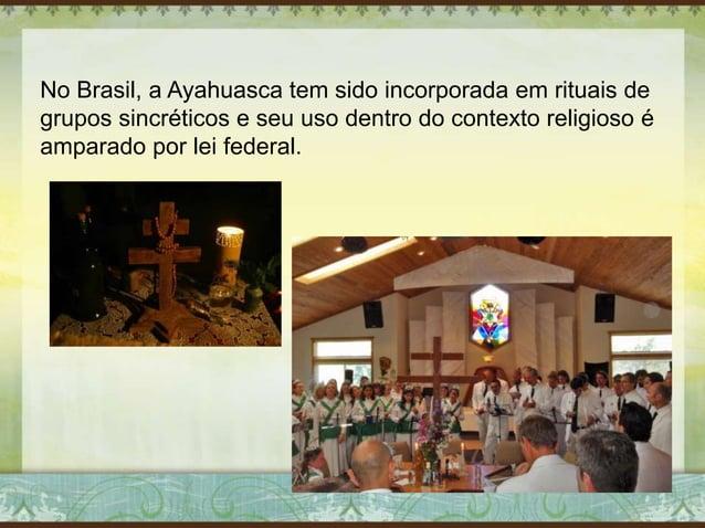 No Brasil, a Ayahuasca tem sido incorporada em rituais de grupos sincréticos e seu uso dentro do contexto religioso é ampa...