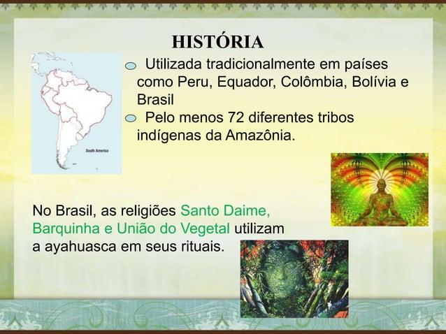 HISTÓRIA Utilizada tradicionalmente em países como Peru, Equador, Colômbia, Bolívia e Brasil Pelo menos 72 diferentes trib...
