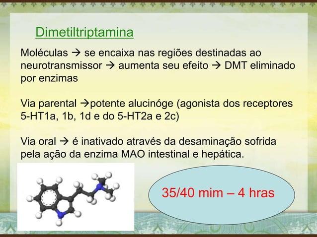 Dimetiltriptamina Moléculas  se encaixa nas regiões destinadas ao neurotransmissor  aumenta seu efeito  DMT eliminado p...