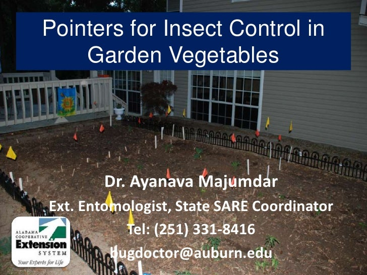 Pointers for Insect Control in Garden Vegetables<br />Dr. Ayanava Majumdar<br />Ext. Entomologist, State SARE Coordinator<...