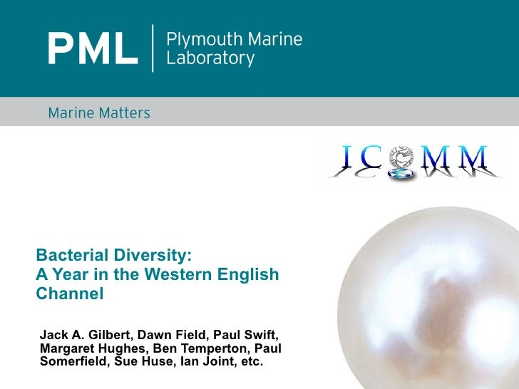 Bacterial Diversity: A Year in the Western English Channel  Jack A. Gilbert, Dawn Field, Paul Swift, Margaret Hughes, Ben ...