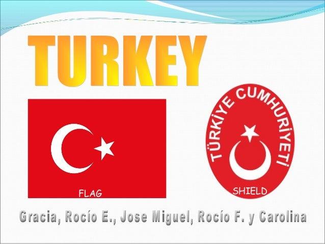 FLAG SHIELD