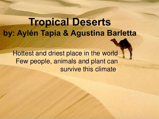 Hottest and driest place in the world Few people, animals and plant can survive this climate.
