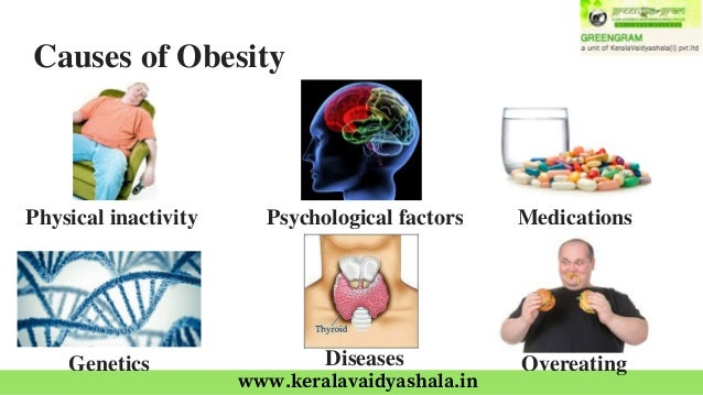 the causes of obesity