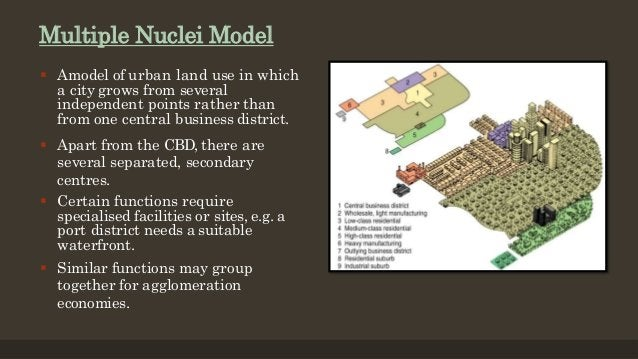 Multiple Nuclei Model  Amodel of urban land use in which a city grows from several independent points rather than from on...