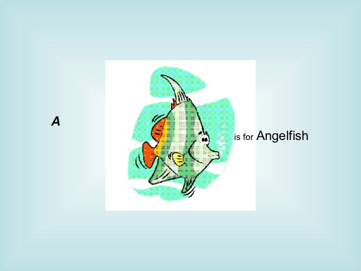 is for  Angelfish     A