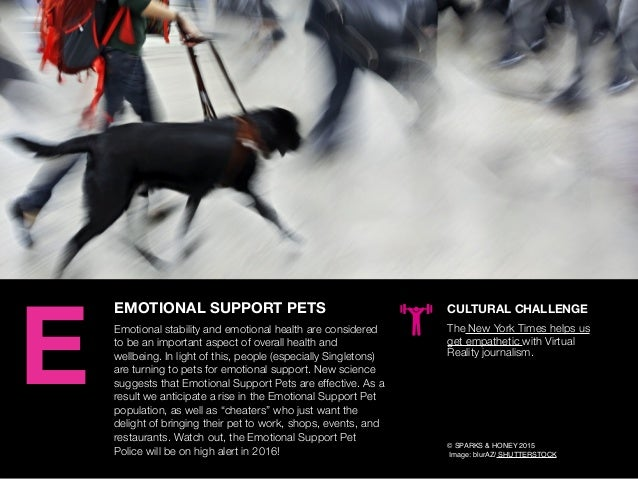 AGENCY OF RELEVANCE EMOTIONAL SUPPORT PETS Emotional stability and emotional health are considered to be an important aspe...