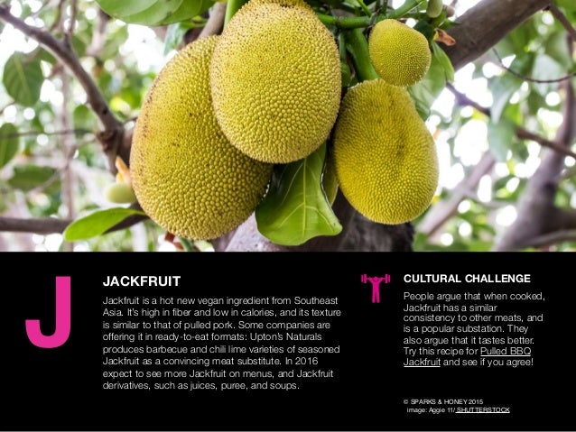AGENCY OF RELEVANCE JACKFRUIT Jackfruit is a hot new vegan ingredient from Southeast Asia. It's high in fiber and low in ca...