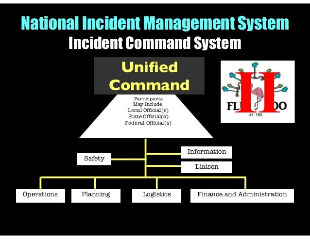 provigil safety and availability management process