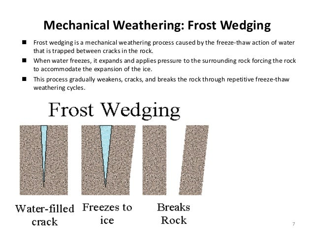 Frost wedging diagram application wiring diagram weathering it s types rh slideshare net frost wedging soil diagram of frost on plants ccuart Choice Image