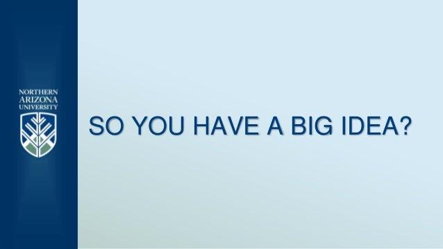 SO YOU HAVE A BIG IDEA?