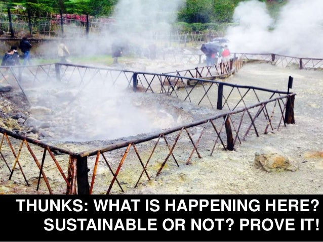 THUNKS: WHAT IS HAPPENING HERE? SUSTAINABLE OR NOT? PROVE IT!