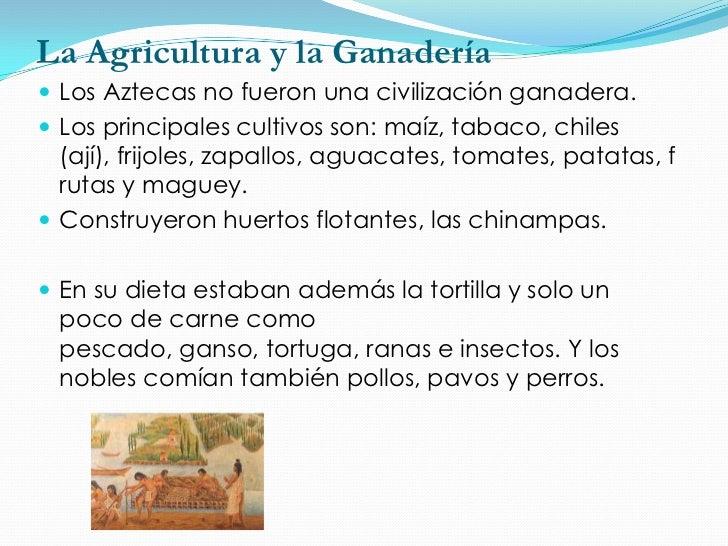 La EconomíaLa economía se basó en la agricultura y el comercio.En los mercados se practicaba el trueque, usando lassemilla...