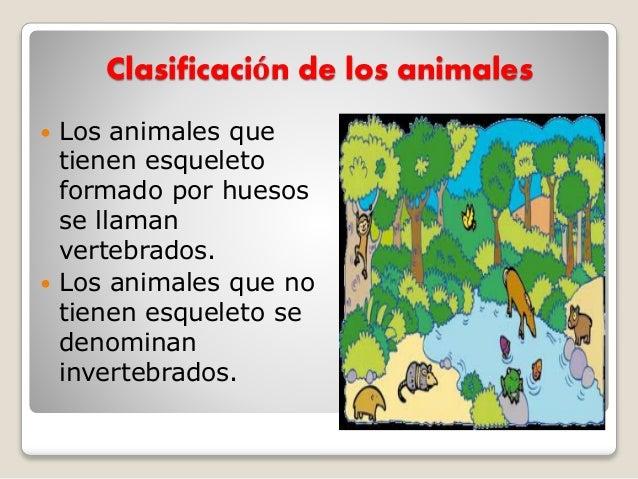 Clasificación de los animales  Los animales que tienen esqueleto formado por huesos se llaman vertebrados.  Los animales...