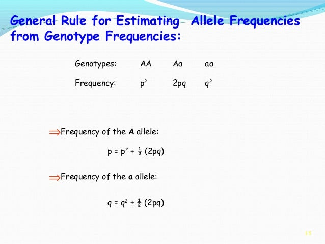 calculation of allele and genotype freq calculation of allele and genotype frequencies & hardy-weinberg equilibrium theory introduction population geneticists study frequencies of genotypes and alleles.