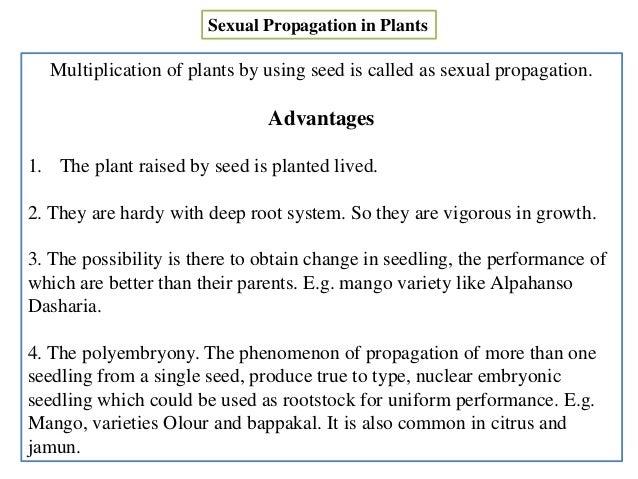 Sexual propagation of plants advantages