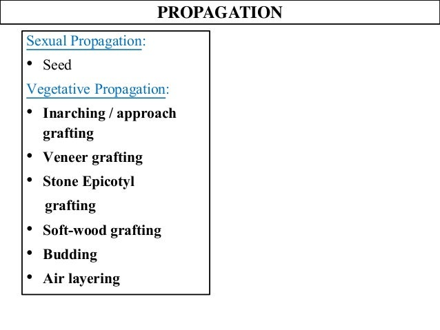Inarching asexual propagation ppt
