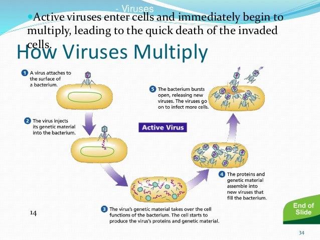 Swine Flu Causes Treatment Prevention amp Vaccine