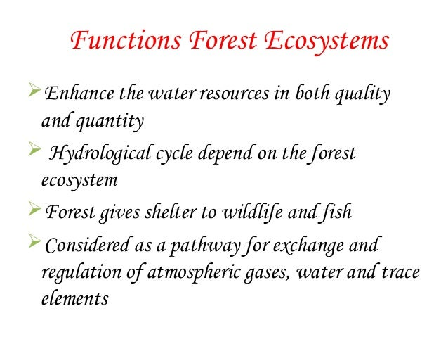 Forest Ecosystem Pdf
