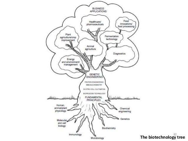 B.tech biotechnology ii elements of biotechnology unit 1