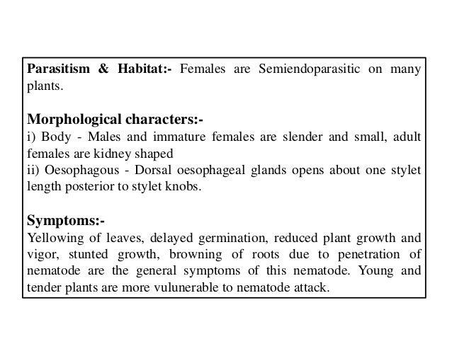 Parasitism & Habitat:- Females are Semiendoparasitic on many plants. Morphological characters:- i) Body - Males and immatu...