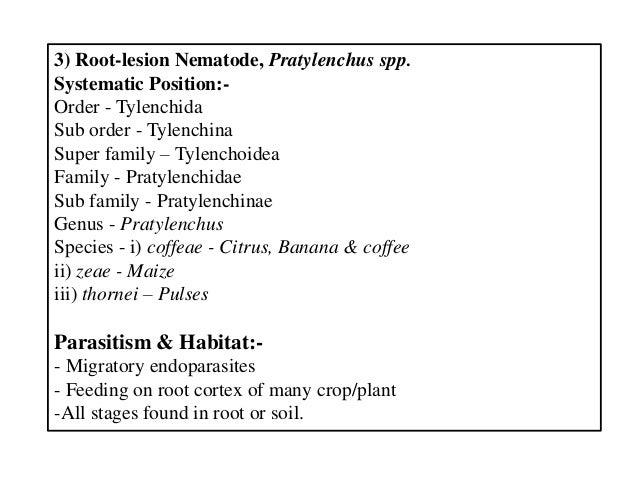3) Root-lesion Nematode, Pratylenchus spp. Systematic Position:- Order - Tylenchida Sub order - Tylenchina Super family – ...