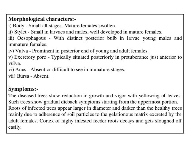 Morphological characters:- i) Body - Small all stages. Mature females swollen. ii) Stylet - Small in larvaes and males, we...