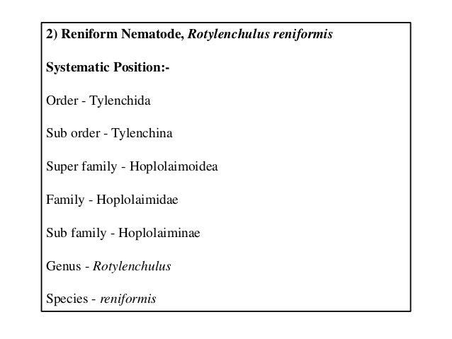 2) Reniform Nematode, Rotylenchulus reniformis Systematic Position:- Order - Tylenchida Sub order - Tylenchina Super famil...