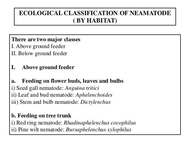 B.Sc. Agri II IN U-2 Classification of Nematodes Slide 3