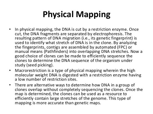Definition Of Physical Maps on
