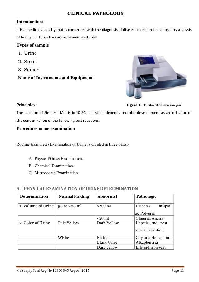 B Sc In Medical Lab Sciene Internship Report Srl From