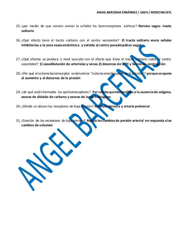 Lujoso Capítulo 18 Anatomía Del Sistema Cardiovascular Componente ...