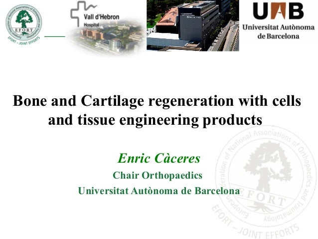 Bone and Cartilage regeneration with cells and tissue engineering products Enric Càceres Chair Orthopaedics Universitat Au...