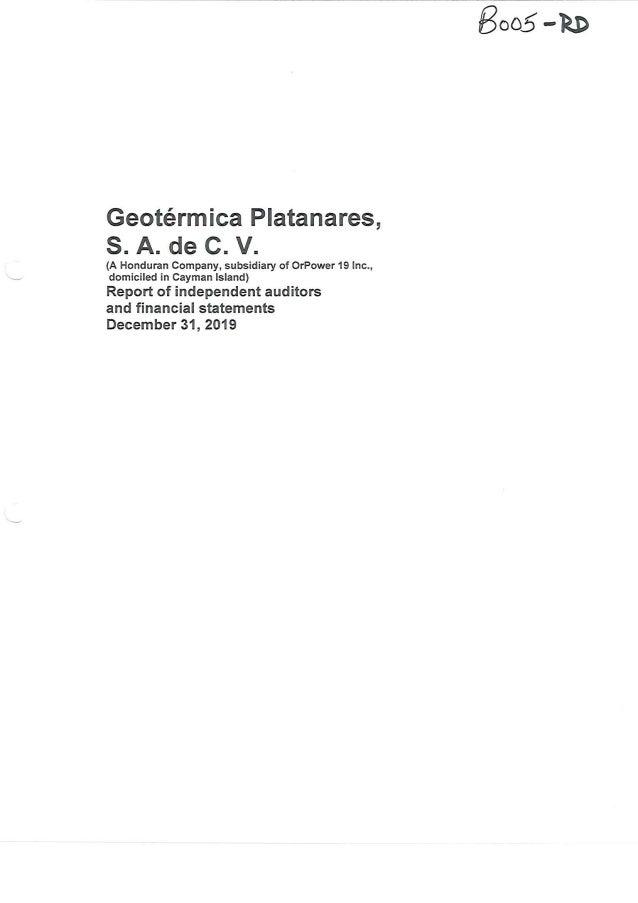 Geoplatanares 2019 audit