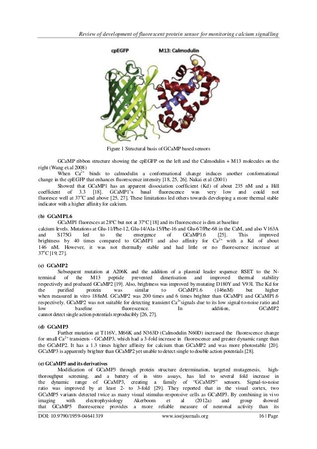 Fluorescent Proteins and Their Applications in Imaging ...