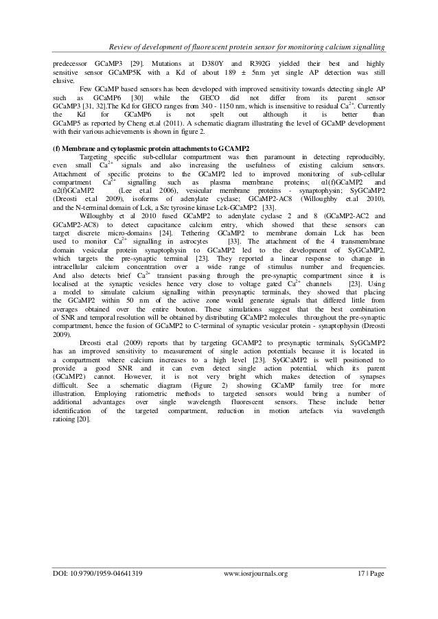 Photoactivatable fluorescent proteins   Nature Reviews ...