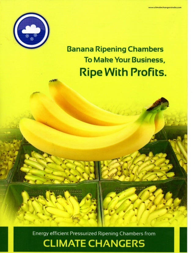 www.climatechangersindia.com Banana Ripening Chambers To Make Your Business, Ripe With Profits. Energy efficient Pressuriz...