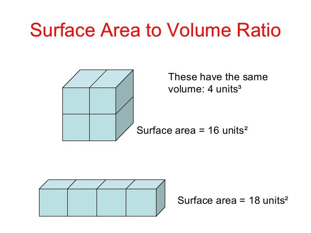 surface area to volume ratio That means you need ice with a low surface-area-to-volume ratio i explained  why when i was on weekend edition sunday with host rachel.