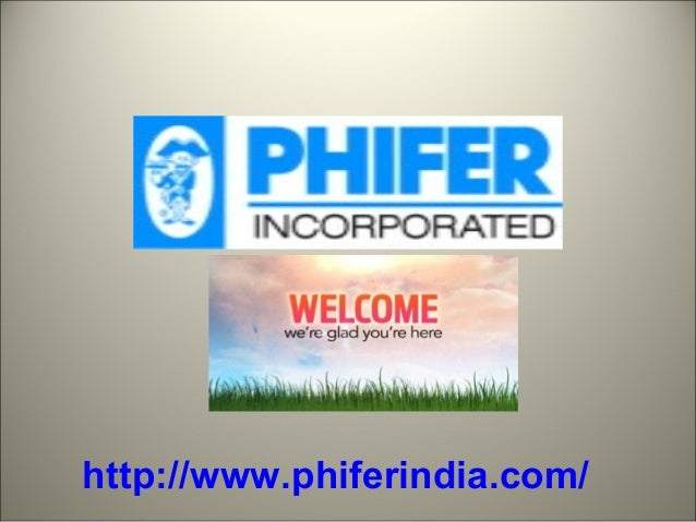 PHIFER MOSQUITO SCREENS - 웹