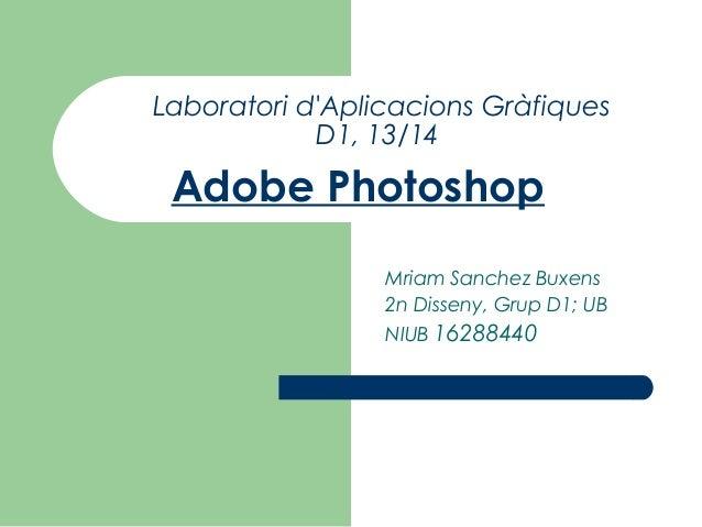 Laboratori d'Aplicacions Gràfiques D1, 13/14  Adobe Photoshop Mriam Sanchez Buxens 2n Disseny, Grup D1; UB NIUB 16288440